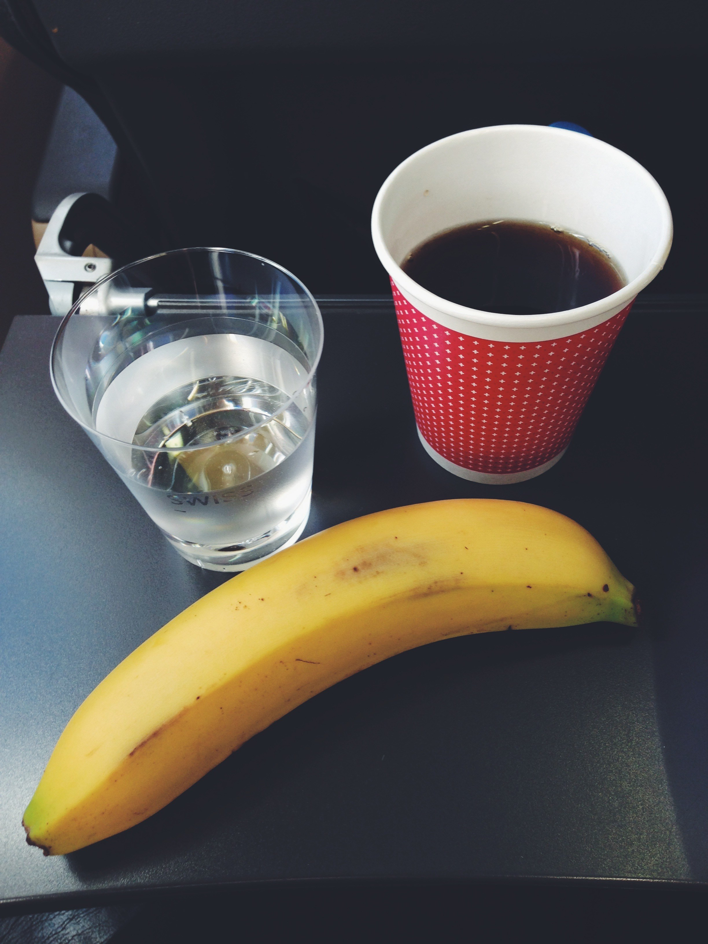 Traveling with Fructose Malabsorption: On the plane // Reisen mit Fructoseintoleranz: Flugzeugessen // Fructopia.de