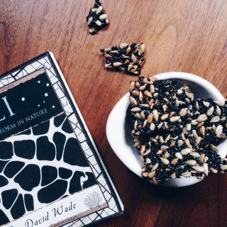 Rezept: Fructosearmes Schwarzes Sesam Sonnenblumenkern Krokant // Recipe: Fructose Free Black Sesame Sunflowerseed Brittle// by Fructopia.de