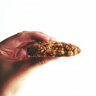 Fructose free recipes: oatmeal coconut cookies // Fructosearme Rezepte: Hafer-Kokos-Kekse // Fructopia.de