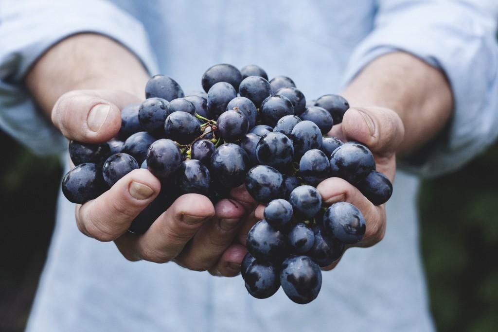 Fructoseintoleranz: Alle Symptome Und Beschwerden auf einen Blick